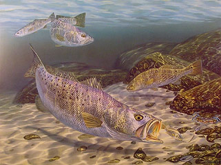 """About To Croak"" by fish artist Randy McGovern"