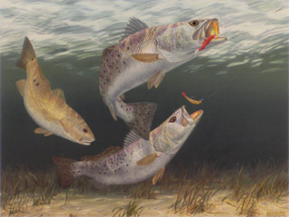 """Doubling Up"" by fish artist Randy McGovern"
