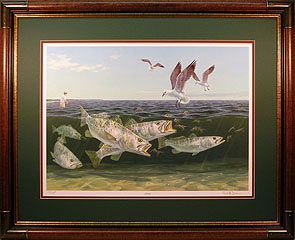 """Frenzy"" by fish artist Randy McGovern"