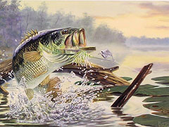 """Buzz Off"" fish print by fish artist Randy McGovern."