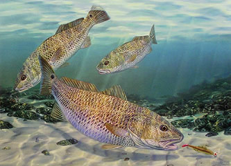 """""""Gold Diggers"""" by fish artist Randy McGovern"""