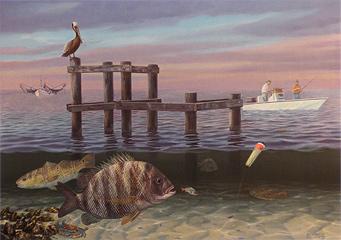 """Herding Sheep"" Sheepshead, Redfish, Flounder Print by fish artist Randy McGovern"