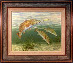 Original fish paintings by fish artist Randy McGovern.